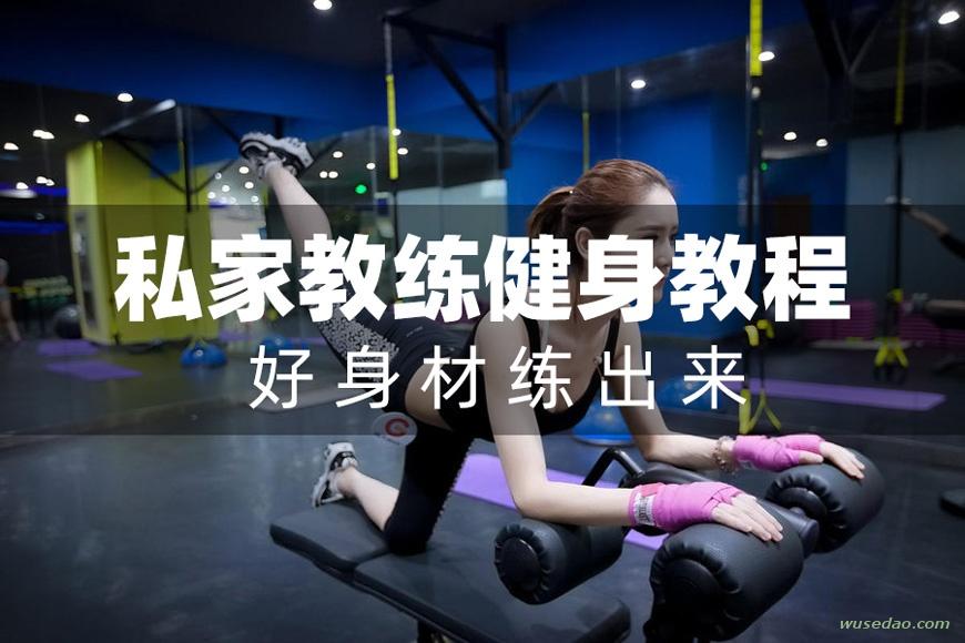 私家教练全套健身教程,好身材练出来