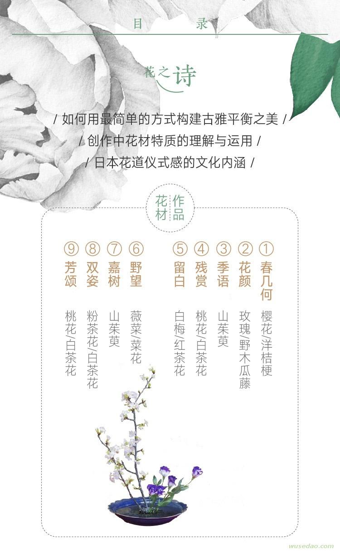 40节中日名师插花课:花知道答案