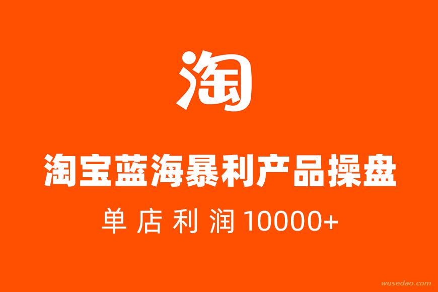 淘宝蓝海暴利产品操盘内训课,单店利润10000+